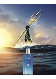 Davidoff Cool Water Aquaman EDT 125ml for Men Men's Fragrance