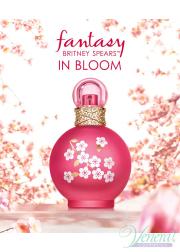 Britney Spears Fantasy in Bloom EDT 100ml for Women Women's Fragrance