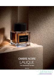 Lalique Ombre Noire EDP 100ml for Men