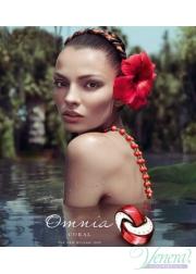 Bvlgari Omnia Coral EDT 65ml for Women Women's Fragrance