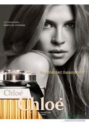 Chloe Eau De Parfum Intense EDP 50ml for Women Women's Fragrance