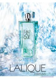 Lalique Eau de Lalique EDT 200ml for Women Without Package
