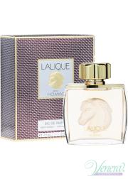 Lalique Pour Homme Equus EDP 75ml for Men